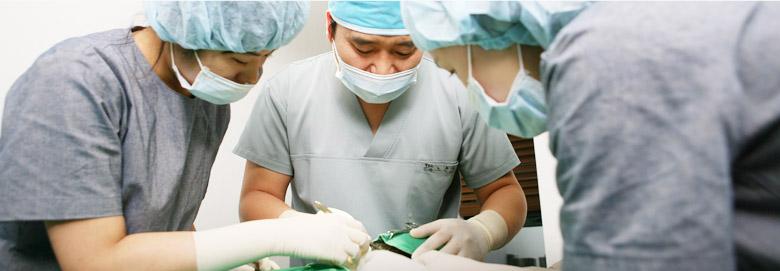 hair transplant korea docters